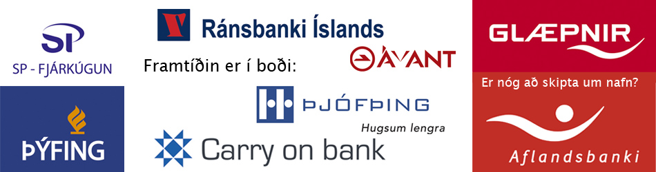 Ævar Rafn Kjartansson - Hausmynd